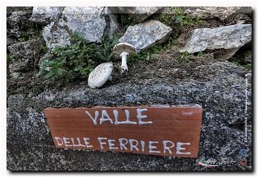 La Valle delle Ferriere