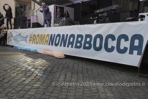Sardine in piazza contro i decreti sicurezza,16/2/2019