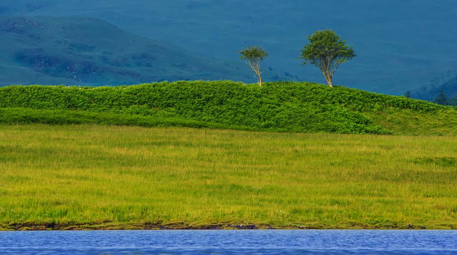 Lock Don Isola di Mull - (Lock Don, Mull Island)