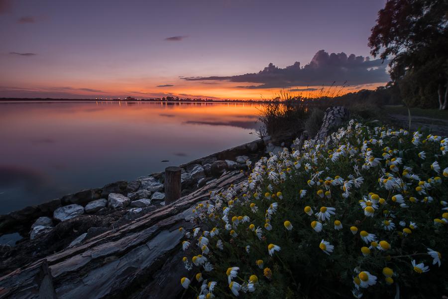 Lago di Fogliano - (Fogliano Lake, National Park of Circeo, Italy)