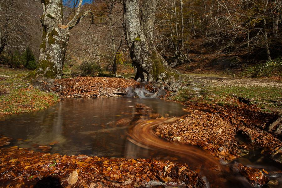 Parco Nazionale del monti Simbruini, Lazio - (Simbruini Mountains National Park, Latium, Italy)