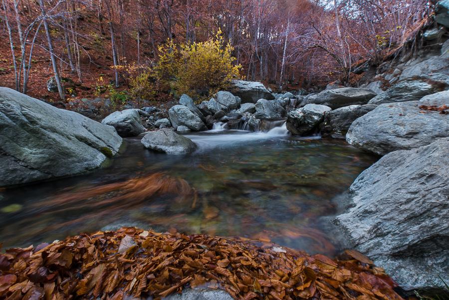 Fiume Po, nei pressi di Pian del Re, Piemonte - (River Po, near Pian del Re, Piedmont, Italy)
