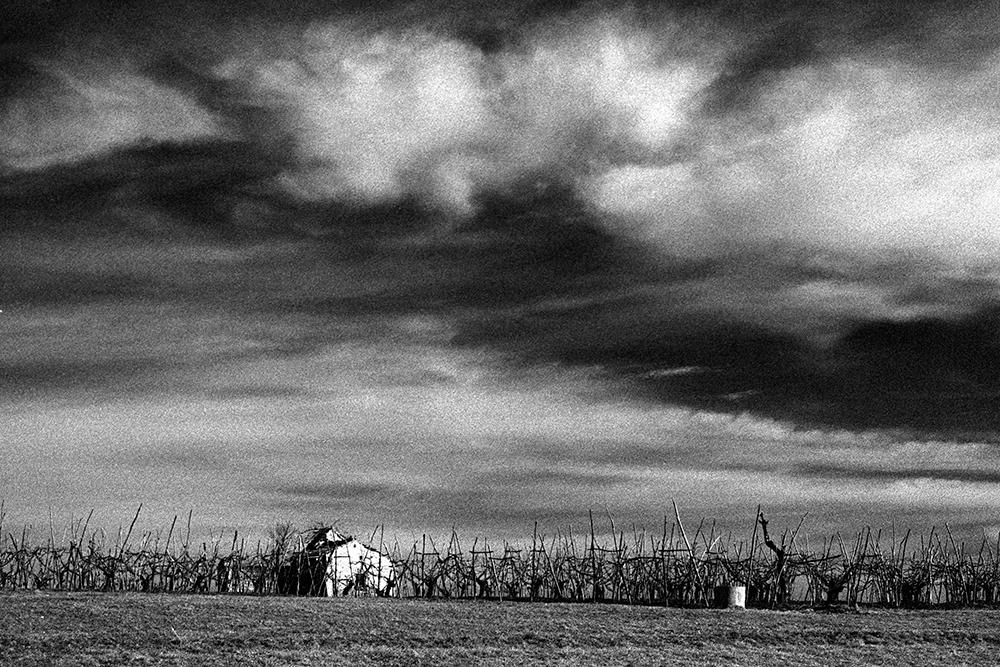 © Mario Balossini - mariobalossini.it