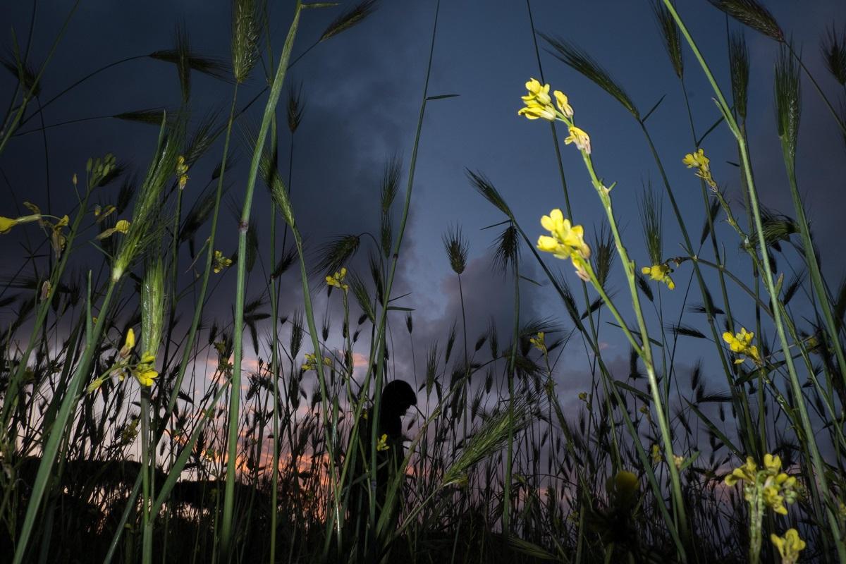 © Valeria Tofanelli - valeriatofanelliphoto.com